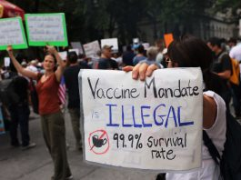 Is it legal to require vaccinations to travel? Yes, say experts